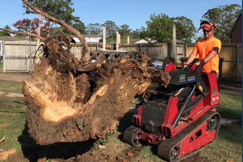 Stump Grinding - High Point Tree Servic
